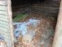 Chata u rybníka