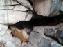 Jeskyně pod Janovou vyhlídkou