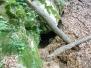 Jeskyně Velebný Žlábek