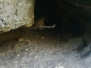 Liščí skála - tunel