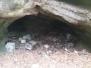 Zabordelená jeskyně